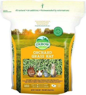 Oxbow Orchard Grass Hay Small Animal Food, 15-oz bag