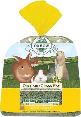 Oxbow Orchard Grass Hay Small Animal Food, 9-lb bag