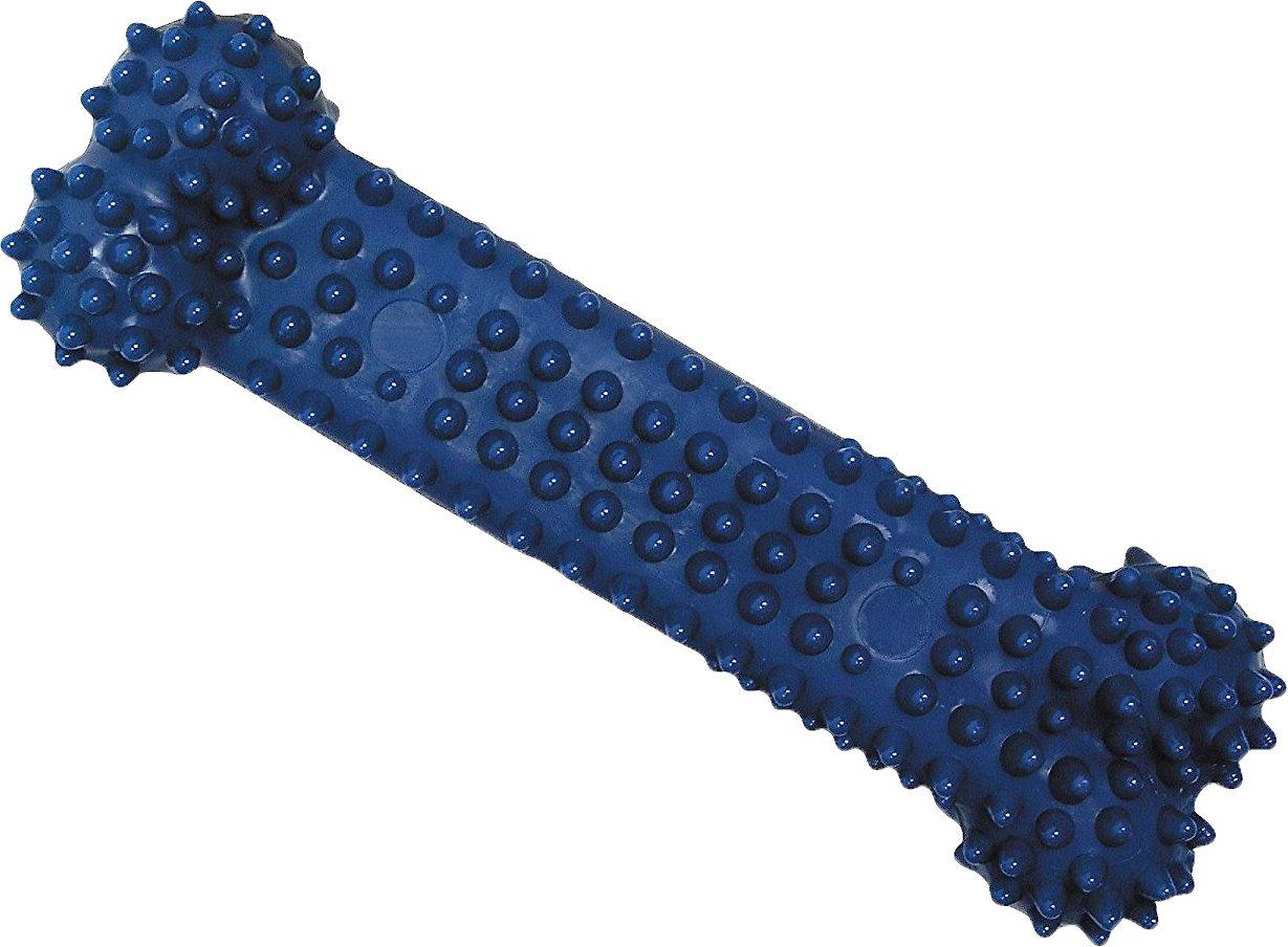 Nylabone Dental Chew Bone Dog Toy Image
