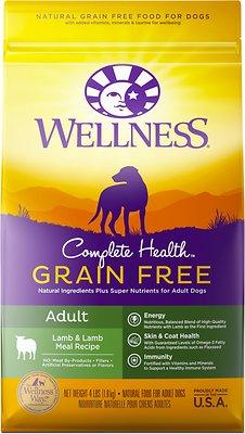 Wellness Complete Health Grain-Free Adult Lamb Dry Dog Food, 4-lb