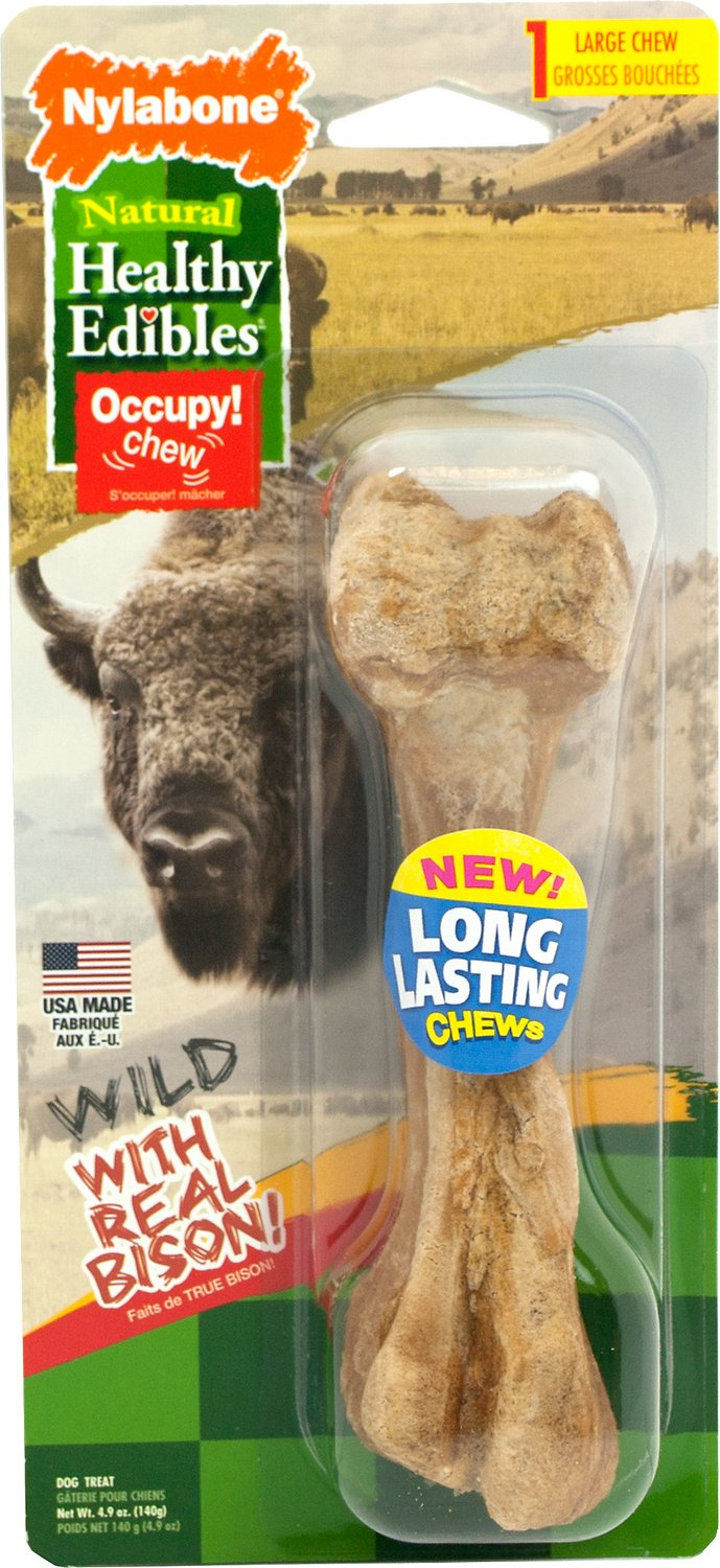 Nylabone Natural Healthy Edibles Wild with Real Bison Large Dog Treat, 1 count