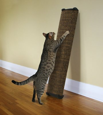 Omega Paw Lean-It Anywhere Cat Scratch Post, 38-in