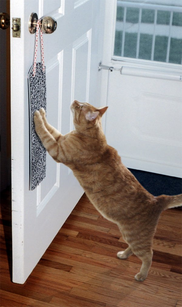Omega Paw Door Hanging Cat Scratchy Pad Image