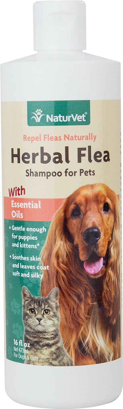 NaturVet Herbal Flea Dog & Cat Shampoo, 16-oz bottle Image
