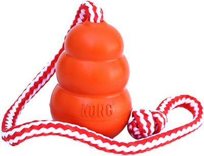 KONG Aqua Dog Toy, Large