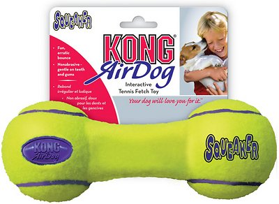 KONG AirDog Dumbbell Dog Toy, Medium
