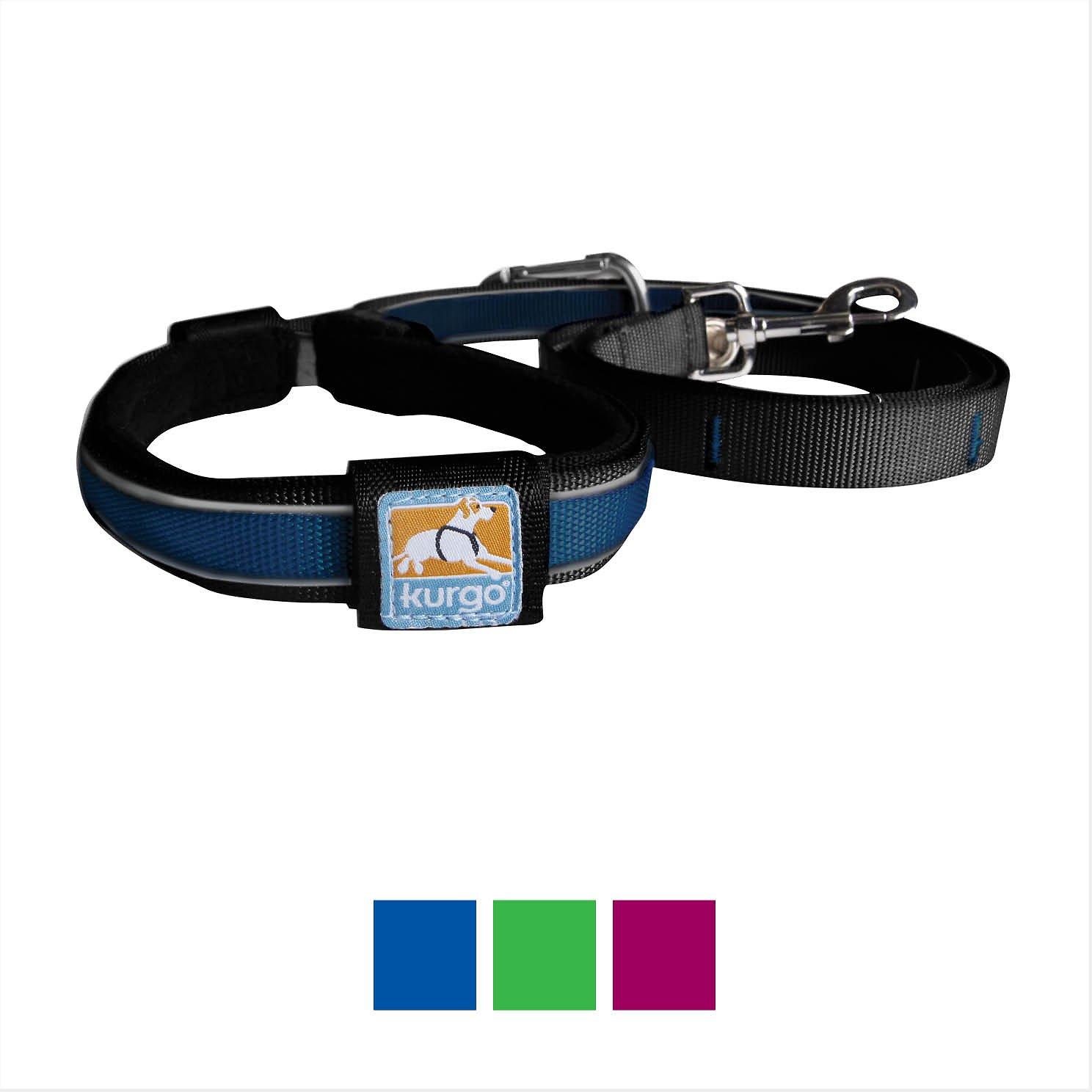 Kurgo Reflect & Protect Quantum Dog Leash, Blue