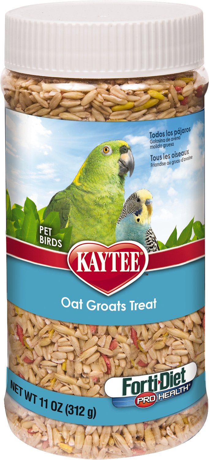 Kaytee Forti-Diet Pro Health Oat Groats Bird Treats, 11-oz jar