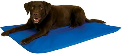 K&H Pet Products Cool Bed III Dog Bed, Blue, Large