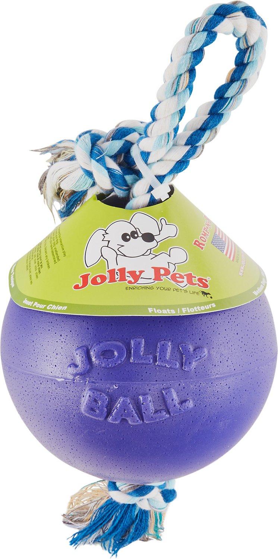 Jolly Pets Romp-n-Roll Dog Toy, Purple Image