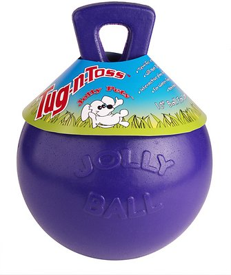 Jolly Pets Tug-n-Toss Dog Toy, Purple, 10-in