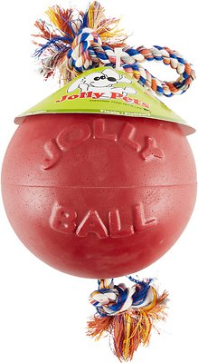 Jolly Pets Romp-n-Roll Dog Toy, Red, 8-in