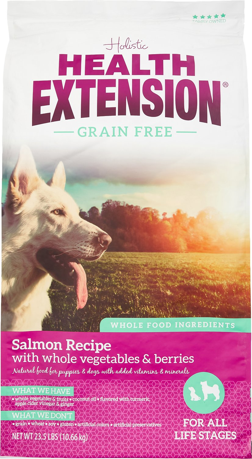 Health Extension Grain-Free Salmon Recipe Dry Dog Food Image