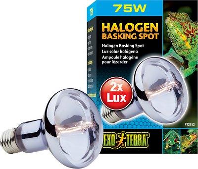 Exo Terra Sun Glo Halogen Daylight Reptile Lamp, 75-w bulb