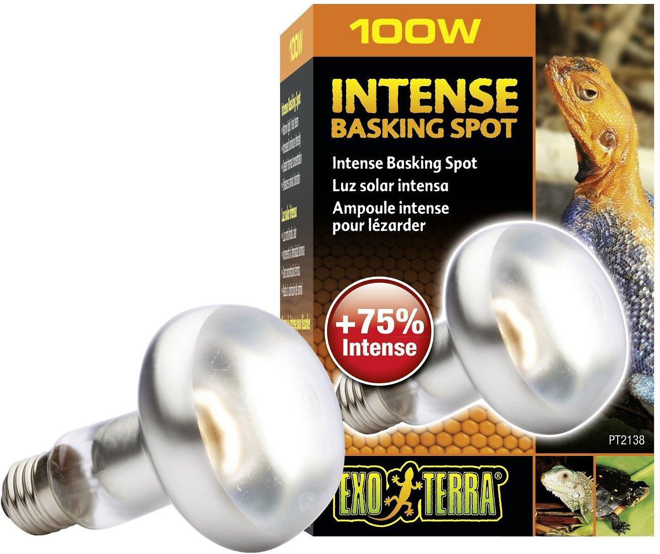 Exo Terra Intense Basking Reptile Spot Lamp Image