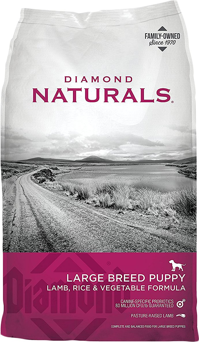 Diamond Naturals Large Breed Puppy Formula Dry Dog Food Image