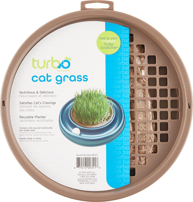 Turbo Scratcher Cat Grass Image