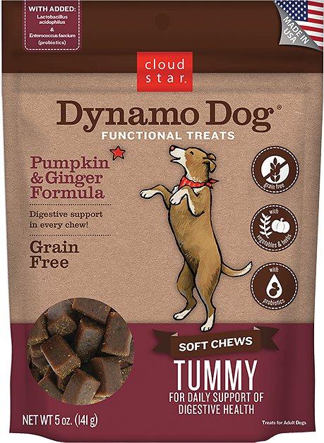 Cloud Star Dynamo Dog Tummy Soft Chews Pumpkin & Ginger Formula Dog Treats Image