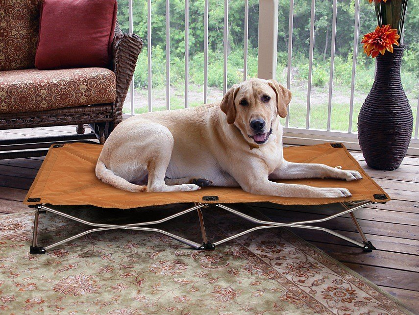 Carlson Pet Products Portable Pup Travel Pet Bed, Tan, Large Image