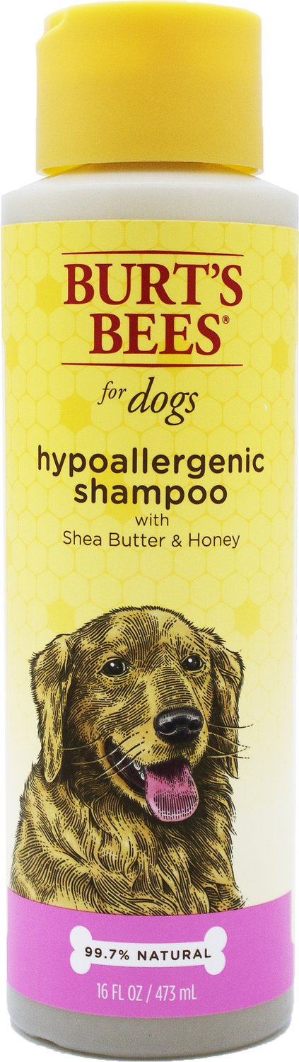 Burt's Bees Hypoallergenic Dog Shampoo, 16-oz bottle (Weights: 1.0 pounds) Image