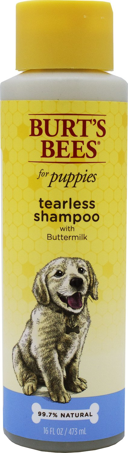 Burt's Bees Tearless Puppy Shampoo with Buttermilk for Dogs, 16-oz bottle Image