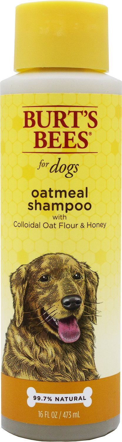 Burt's Bees Oatmeal Shampoo with Colloidal Oat Flour & Honey for Dogs, 16-oz bottle