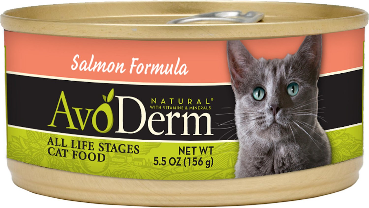 AvoDerm Natural Salmon Formula Canned Cat Food, 5.5-oz