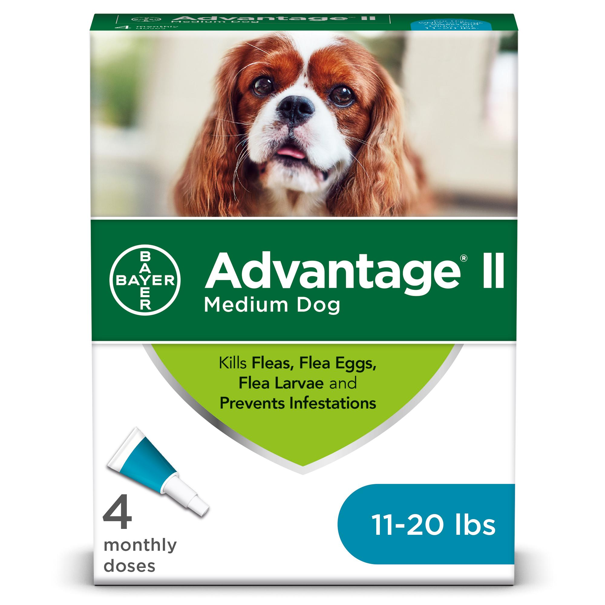 Advantage II Flea Treatment for Medium Dogs 11-20 lbs, 4-pack (Size: 4-pack, Size: 4-pack) Image