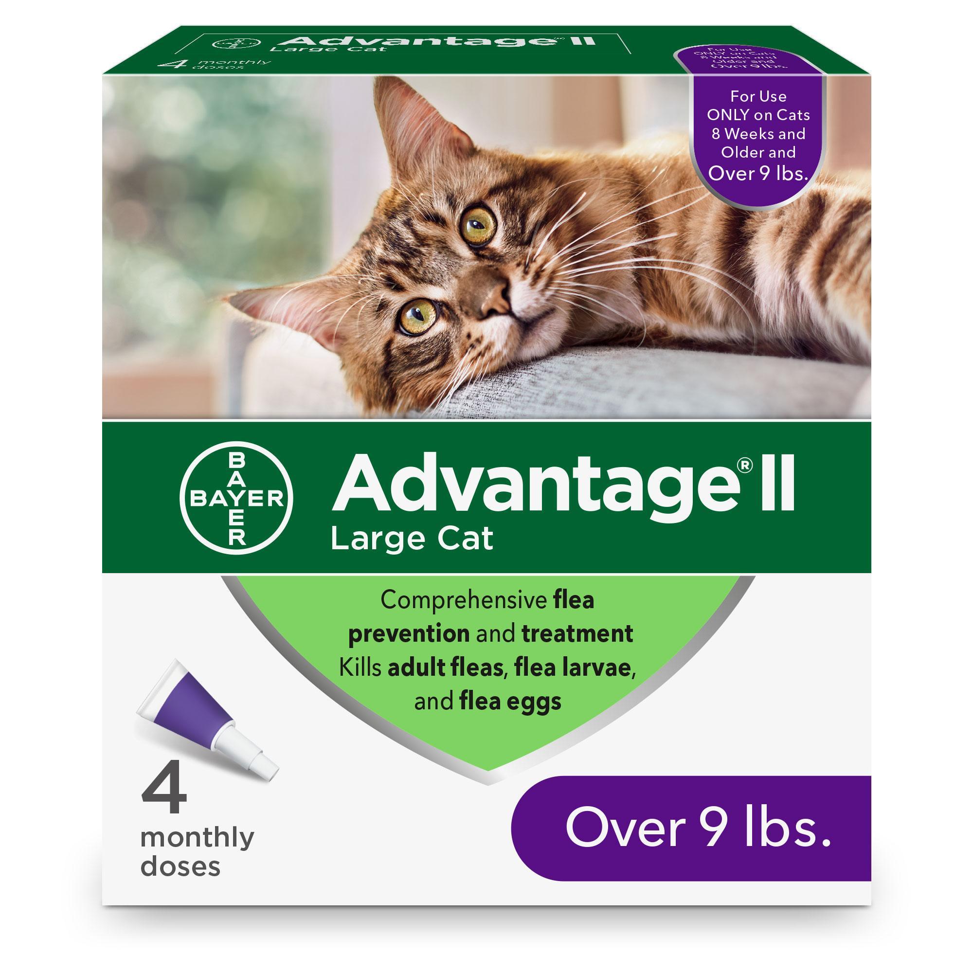 Advantage II Flea Treatment for Large Cats Over 9-lb, 4-pack
