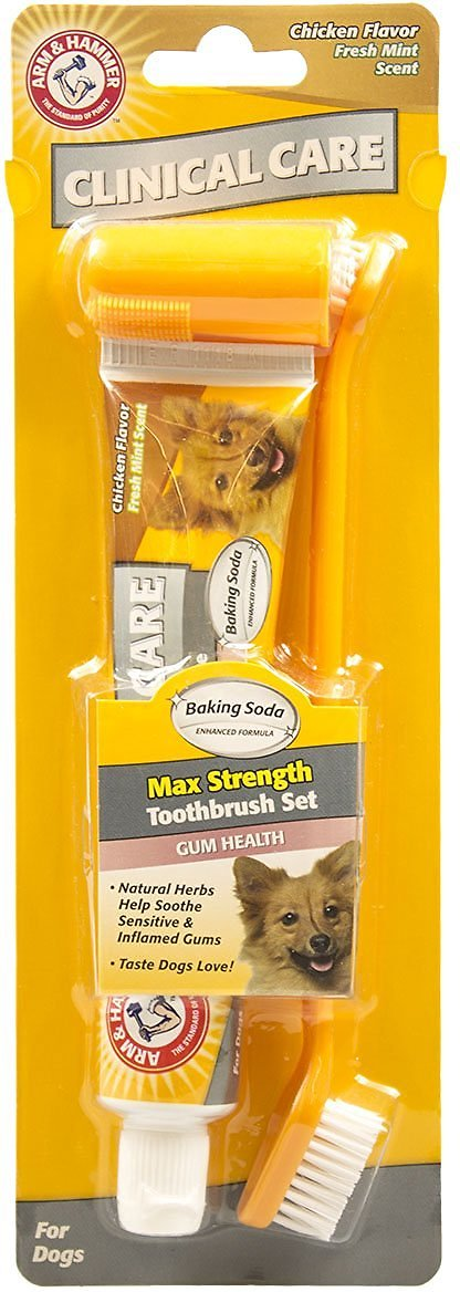 Arm & Hammer Dental Clinical Care Maximum Strength Gum Care Toothpaste & Brush Set Kit for Dogs