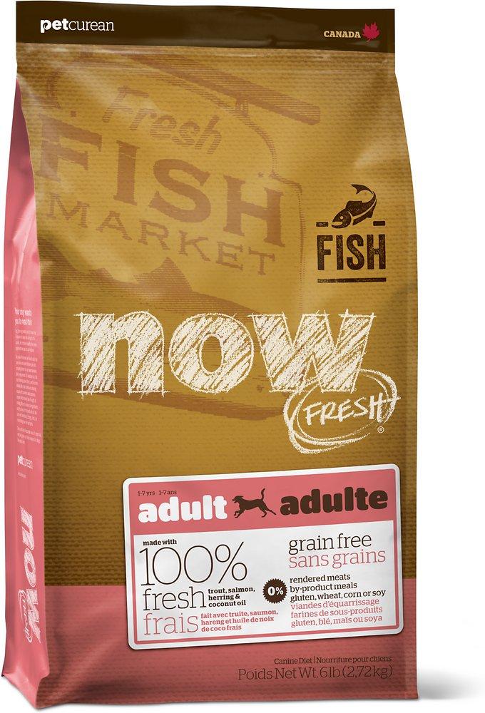 Now Fresh Grain-Free Adult Fish Dry Dog Food, 6lbs