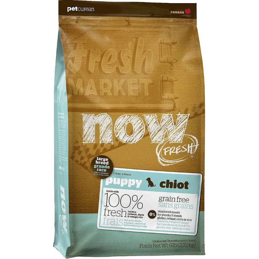 Now Fresh Grain-Free Large Breed Puppy Dry Dog Food Image