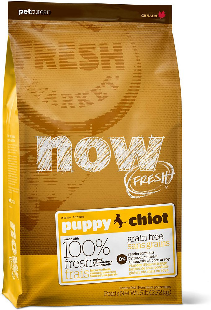 Now Fresh Grain-Free Puppy Dry Dog Food Image