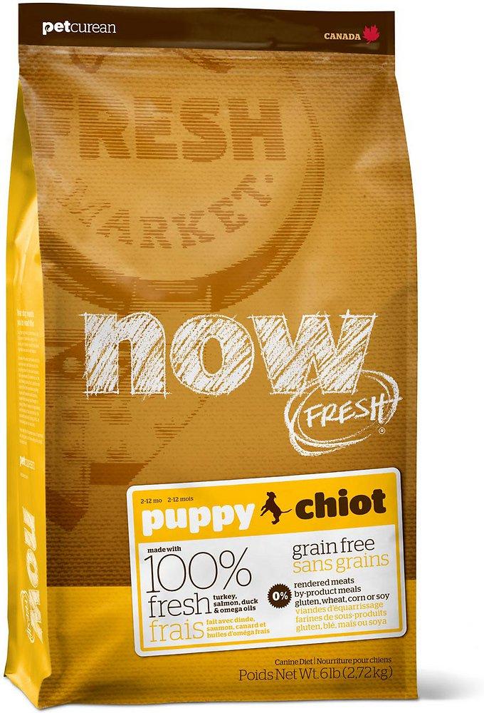 NOW FRESH Grain-Free Puppy Dry Dog Food, 6lbs
