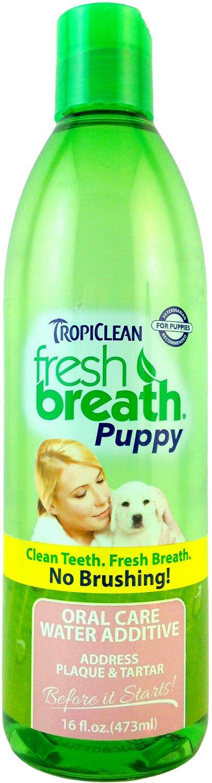 TropiClean Fresh Breath Puppy Water Additive, 16-oz bottle
