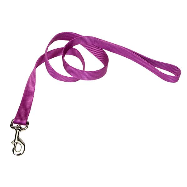 Coastal Single-Ply Dog Leash, Orchid, 3/8-in Wide x 4-ft Long