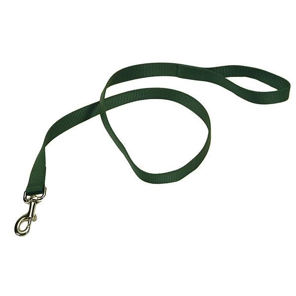 Coastal Single-Ply Dog Leash, Hunter, 3/4-in Wide x 6-ft Long