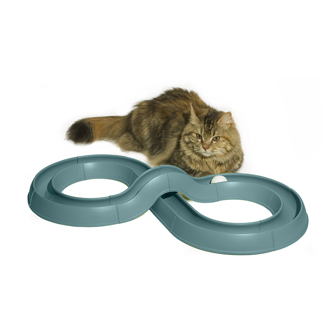 Turbo Track Cat Toy Image