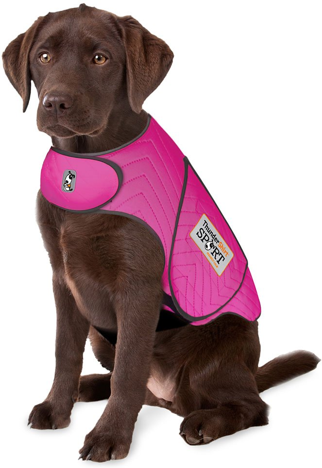 ThunderShirt Sport Anxiety & Calming Solution for Dogs Image