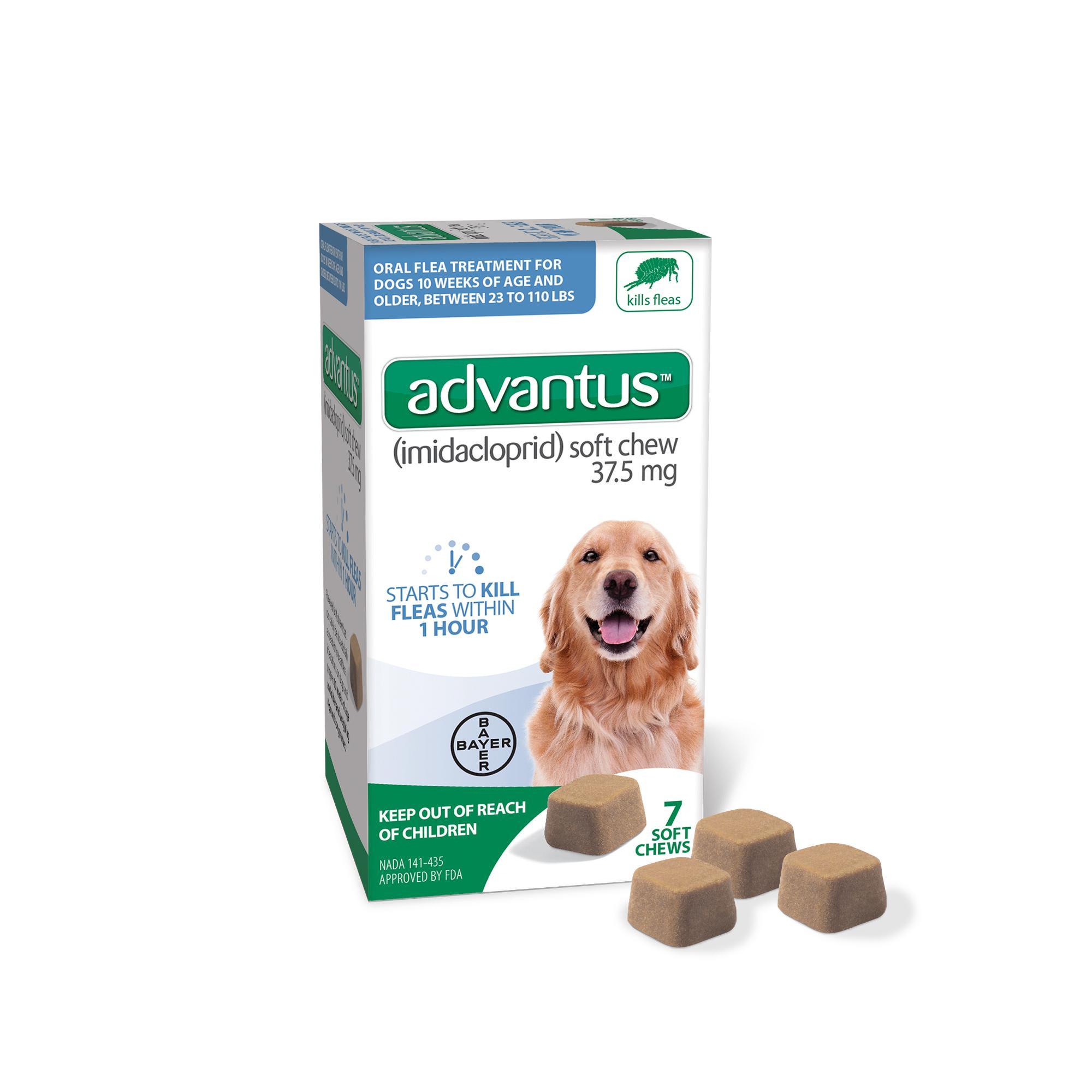 Advantus Large Dog Soft Chew Flea Treatment, 7-count