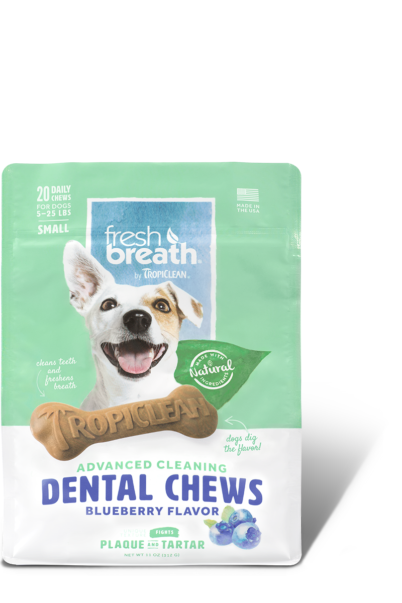 TropiClean Advanced Small Cleaning Dental Dog Chew - Blueberry Flavor, 20-ct