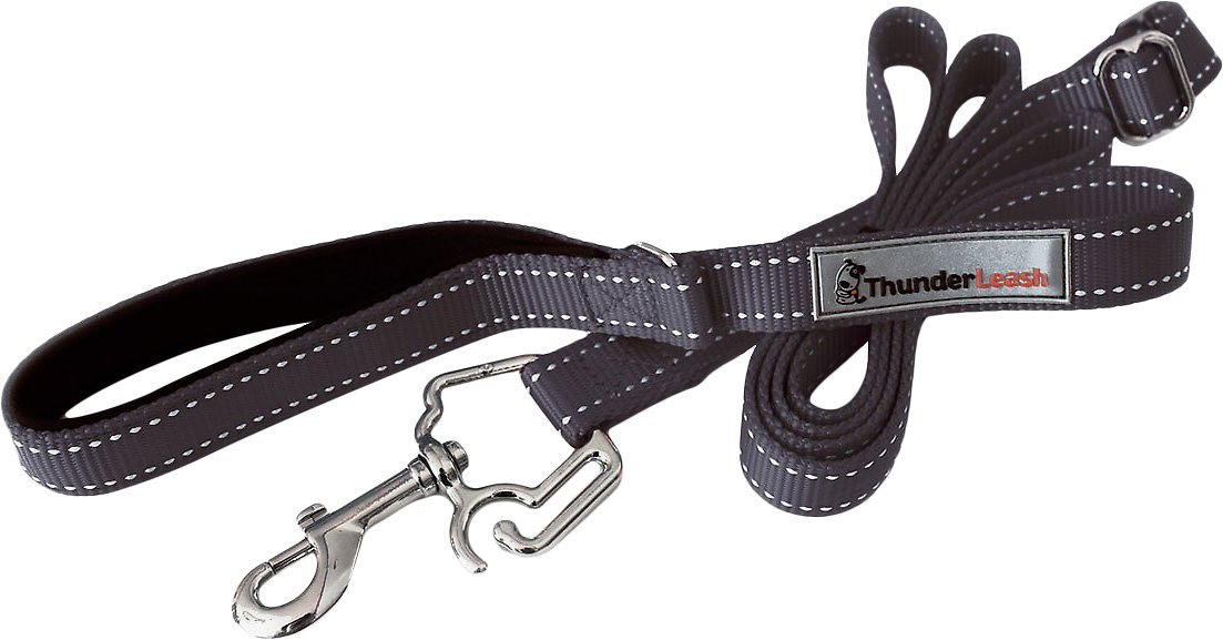 ThunderLeash Dog Leash, Black Image