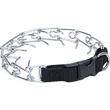 Coastal Titan Martingale Prong Training Dog Collar, 18-in