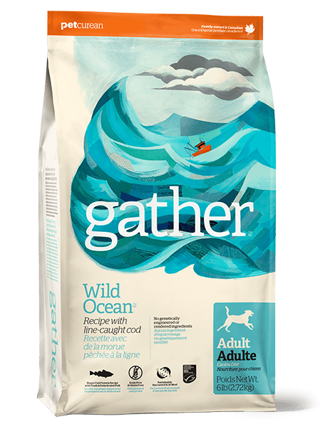 Gather Wild Ocean Line Cod Adult Dry Dog Food Image