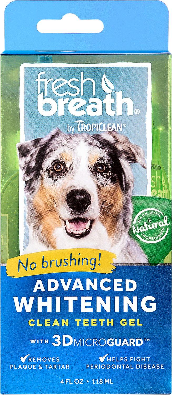 TropiClean Fresh Breath Advanced Whitening Clean Teeth Gel Kit, 4-oz