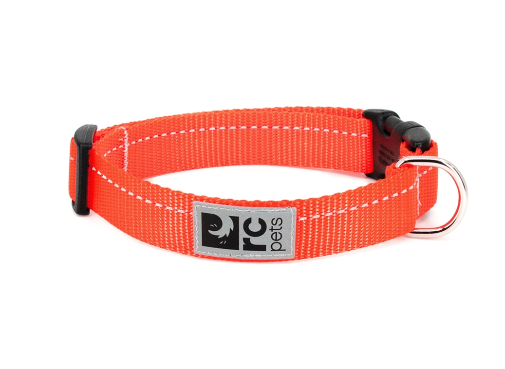 RC Pet Products Primary Clip Orange Dog Collar, Large