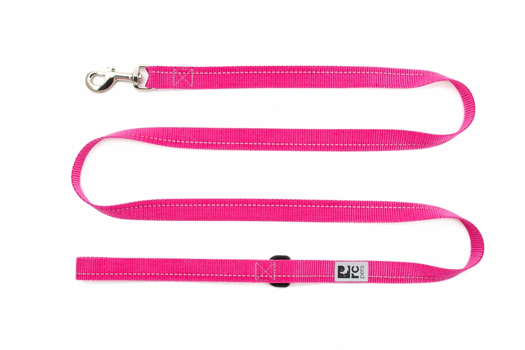 RC Pet Products Primary Raspberry Dog Leash, 1inch x 6ft