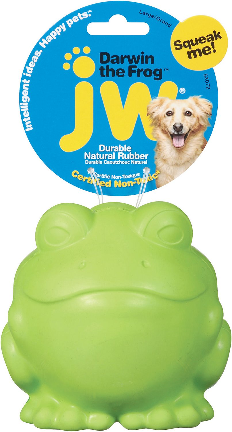 JW Pet Darwin the Frog Squeaky Dog Toy, Color Varies, Small