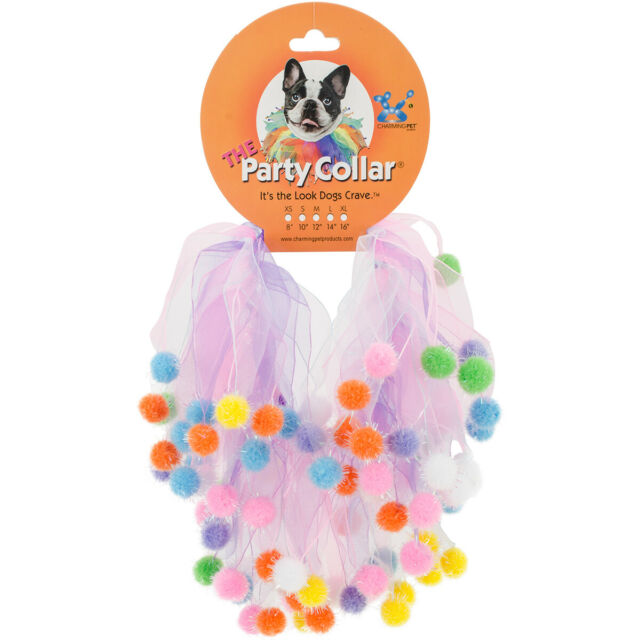 Charming Pet The Party Collar Birthday Pom Pom Image