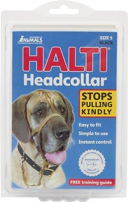 Halti Dog Headcollar, Black, Size 5